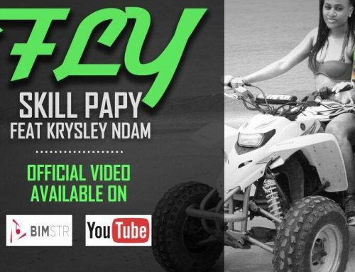 Video + Download: Skill Papy Ft. Krysley Ndam – FLY