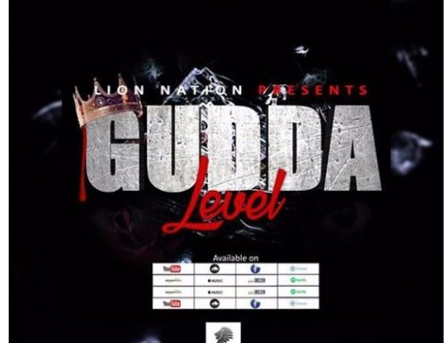 Download: GUDDA ROE – LEVEL