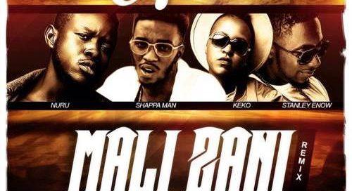 Mali-Zani-Remix-Cover