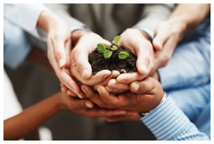 peoples-hands-holding-plant-in-soil.jpg
