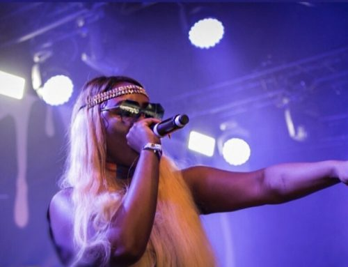 MC Charlene Makes Cameroon And Africa Proud At The Diamond Platnumz Concert In Berlin!