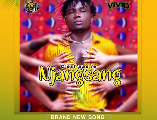 Video + Download: VIVID – C'est Pas Le Njangsang (Prod. By Abztrumental)