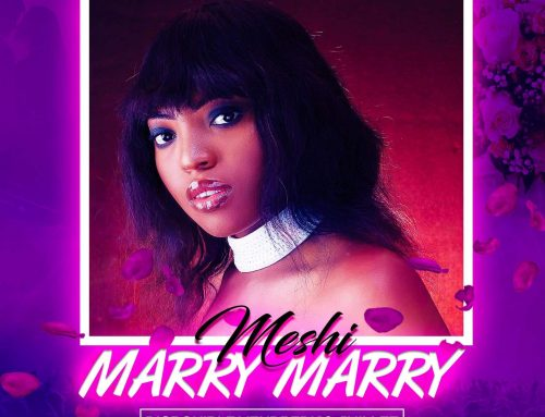Video + Download: MESHI – Marry Marry (Prod. By Akwandor)