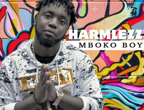 Video + Download: Harmlezz – Mboko Boy (Prod. After Design Music)