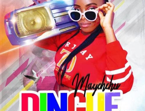 Video + Download: Mayohchu – Dingue (Prod. By Loony Tunez)