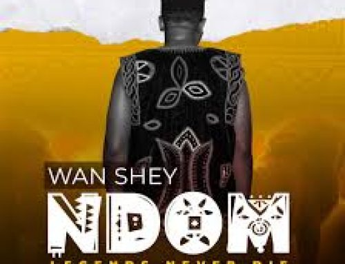 Video + Download: Wan Shey – Ndom (Directed by TABI ZAMA)